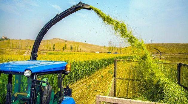 FANGHI IN AGRICOLTURA: CONTROLLI A GARANZIA DEI CONSUMATORI